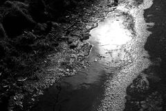 Czarny i biały kontrast fotografia kałuża z lodem, świeceniem i śladami buty, obrazy stock