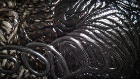 Czarny i biały plastikowy materiał po roztapiającej tekstury fotografia stock