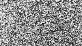 Czarny i biały prostacki piaska tło fotografia stock