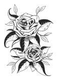 Czarny I Biały róże ilustracja wektor
