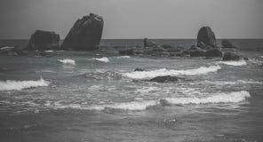 Czarny i biały seascape sztuki pięknej kamery oczu mody pełne splendoru zieleni klucza wargi target1847_0_ depresję robią fotogra Fotografia Stock