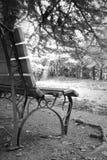 Czarny I Biały widok z ławką i jeziorem zdjęcia royalty free