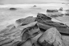 Czarny i biały wizerunek królewiątko plaża Obraz Royalty Free