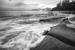 Czarny i biały wizerunek królewiątko plaża Obrazy Royalty Free