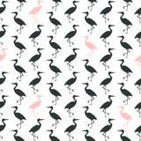 Czarny i biały z różowym bezszwowym wzorem Zdjęcie Royalty Free