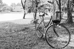 Czarny i biały bicykl w ogródzie Obrazy Stock