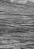 Czarny I Biały drewno Obraz Stock