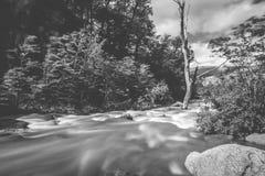 Czarny i biały fotografia halna rzeka Shevelev Zdjęcie Royalty Free