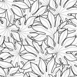 Czarny i biały graficzna palma opuszcza bezszwowego wzór Obraz Royalty Free