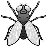 Czarny I Biały komarnicy Odgórny widok Zdjęcie Stock