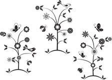 Czarny I Biały kwiatów drzewa, ptaki, motyle, biedronki Fotografia Stock