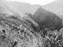 Czarny I Biały Mach Picchu Fotografia Stock