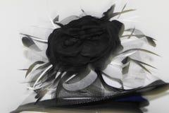 Czarny I Biały Piórkowy kapelusz Obraz Royalty Free