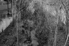 Czarny i biały rzeka Obraz Stock