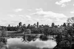 Czarny i biały widok central park, podczas zimy, z peo Obrazy Royalty Free