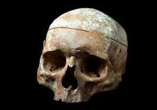 czarny istoty ludzkiej odosobniona czaszka Zdjęcia Royalty Free