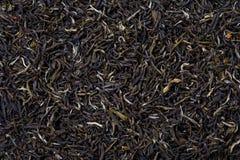 czarny jaśminowa luźna herbata Zdjęcie Royalty Free