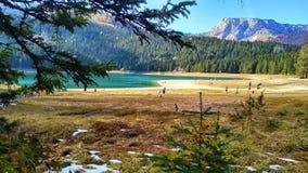 Czarny jezioro Zdjęcie Royalty Free