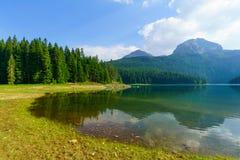 Czarny jezioro, Durmitor Obraz Royalty Free
