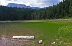 Czarny jezioro - Durmitor (Crno jezero) zdjęcia royalty free