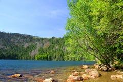 Czarny jezioro, republika czech Obrazy Royalty Free