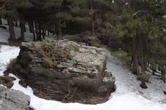 Czarny kamień w śniegu lub skała zdjęcia stock