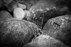 czarny kamienie Fotografia Royalty Free