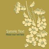 czarny karta barwił kwiecistego kwiatu irysa biel Fotografia Royalty Free