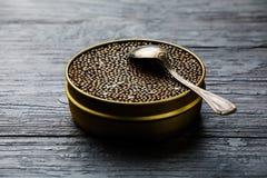 Czarny kawior wewnątrz może i srebna łyżka Zdjęcie Stock