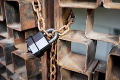 Czarny kluczowy kędziorek Zdjęcie Royalty Free