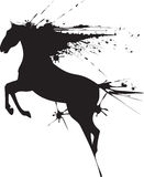 Czarny koń Obraz Royalty Free