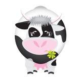 czarny koniczynowej krowy śliczny cztery liść biel Zdjęcie Royalty Free