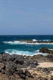 Czarny koral na plaży z Błękitną kipielą Obraz Stock