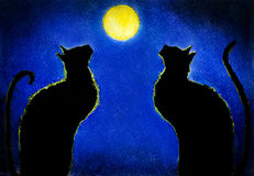 czarny kot dwa Zdjęcia Stock