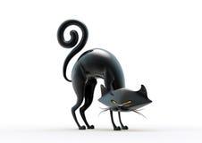 czarny kot Halloween Zdjęcie Royalty Free