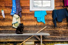 Czarny kot na ławce blisko wioska domu fotografia royalty free