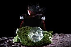 Czarny kot z Krystaliczną czaszką Fotografia Royalty Free