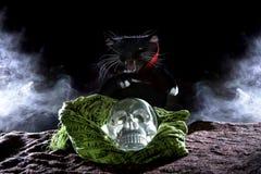 Czarny kot z Krystaliczną czaszką Zdjęcia Royalty Free
