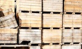 czarny kota skrzynki Zdjęcie Stock
