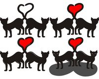 czarny koty Zdjęcie Royalty Free
