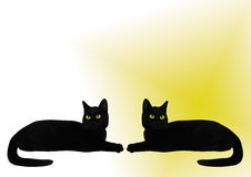 czarny koty dwa Obrazy Royalty Free