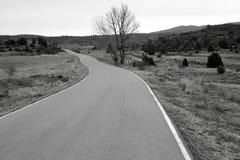 czarny krajobrazowy osamotniony biel Zdjęcie Royalty Free
