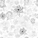 Czarny kreskowy lotosowych kwiatów wzoru tło na bielu Zdjęcia Stock