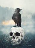Czarny kruk na czaszce przeciw nietoperzom folującym Halloween nawiedzająca domowa księżyc bani scena Zdjęcia Stock