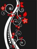 czarny kwiecisty tła ilustracja wektor