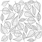 czarny liść vector biel ilustracja wektor