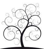 czarny ślimakowaty drzewo Obraz Royalty Free