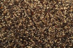 czarny makro pepper Zdjęcia Stock