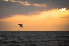 Czarny morze Fotografia Stock