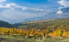 Czarny morze krajobraz przy sezonem jesiennym Fotografia Stock